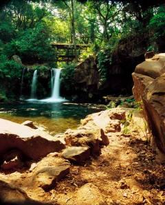 Parque Nacional, La Tzararacua