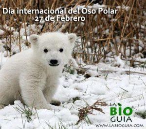 Cachorro de oso polarLa Bioguia.