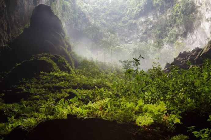 Selva interior de Hang Son Doong