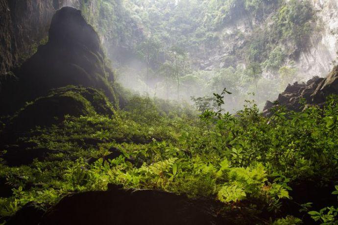 Selva interior de Hang Son Doong