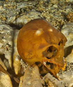 Craneo Naia revela origen y antiguedad americanos