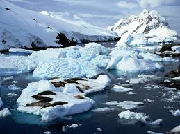 Deshielo Antartida