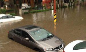 Otra jornada de fuerte lluvia deja inundaciones y arboles caidos