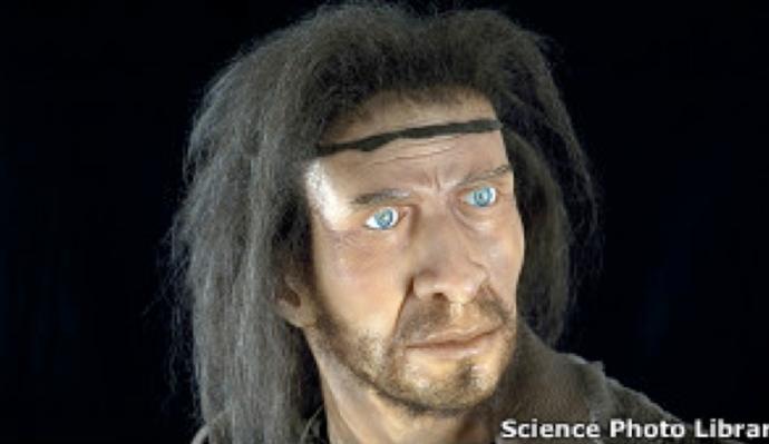 Como era el Homo habilis