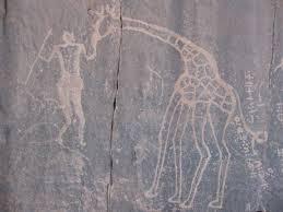 Tassili jirafa