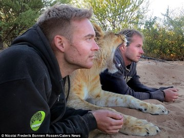 Mikkel Valentin y Sirga su leona adoptada
