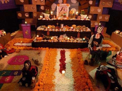 Camino de flores para ofrenda el dia de muertos