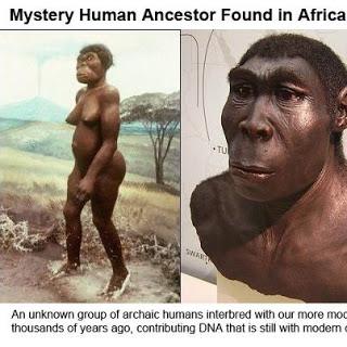 Eva mitocondrial Africa