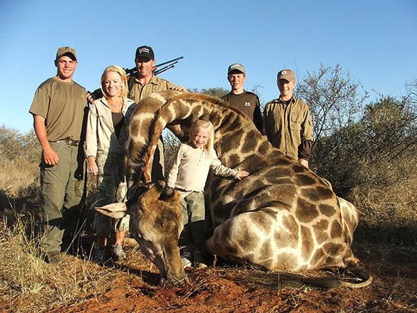 jirafa cazada por familia-
