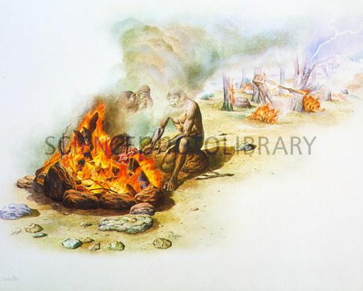 cocinando con fuego