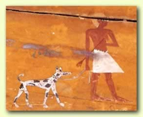 perro en Egipto