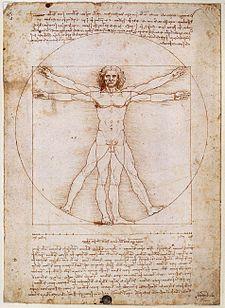Vitruvian, hombre de Vitruvio, Leonardo Da Vinci