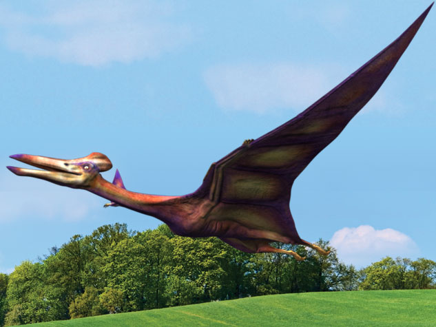 Quetzalcoatlus, la criatura más grande que jamás haya volado.