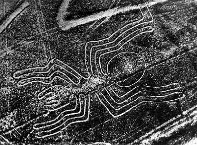 Lineas de Nasca araña