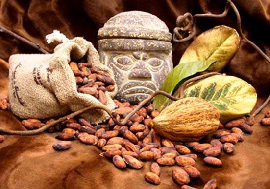 LOS MAYAS Y EL CACAO (CHOCOLATE)